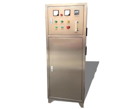 100克/小时臭氧发生器